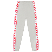 Equipment TRAINING PANTS Б LIGHT GREY /STRIPED Б