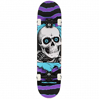 Powell Peralta RIPPER ONE OFF PURPLE/TURQUOISE