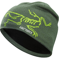 ARCTERYX BIRD HEAD TOQUE Shorepine/Titanite