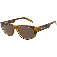 Arnette DAEMON HAVANA/BROWN