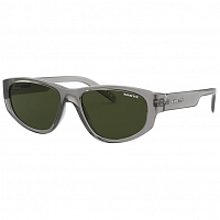 Arnette DAEMON SHINY TRANSPARENT GREY/DARK GREEN